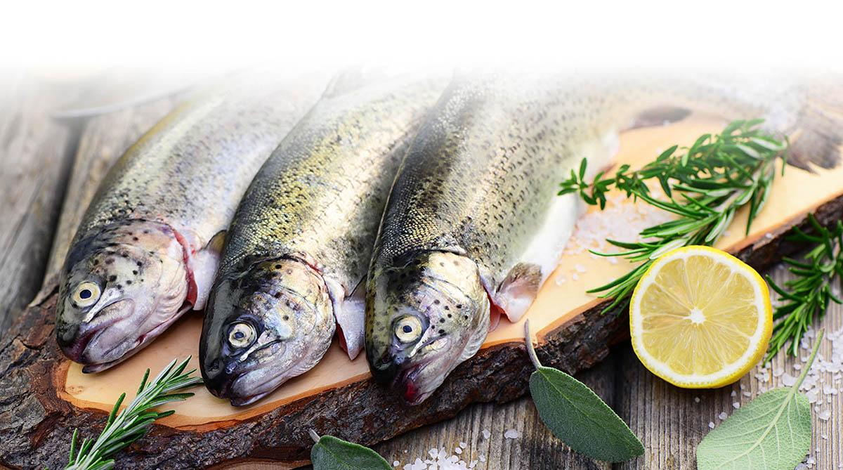 les poissons du restaurant le beau soleil à Annecy truite